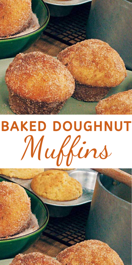 Baked Doughnut Muffins - They may look like muffins, but a dunk in melted butter and a roll in cinnamon-sugar makes these luscious morsels taste more like donuts, without the hassle of deep-frying. We sell out of these muffins every morning at my Downtown Bakery and Creamery.  #bakeddonutrecipe #doughnutrecipe #muffins #muffinsrecipes #dessertfoodrecipes