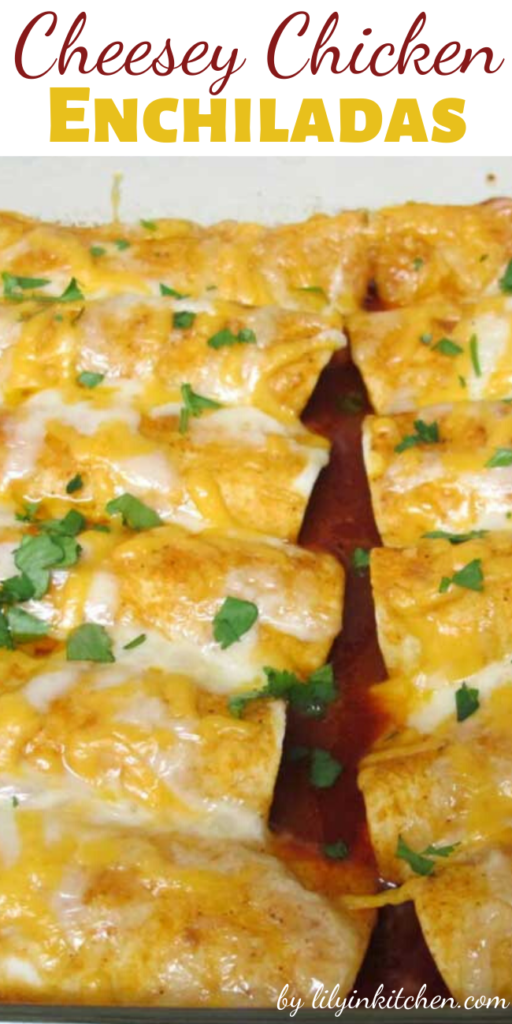 I REALLY wanted some enchiladas last week. This Cheesey Chicken Enchiladas recipe was so easy, I may just not go out for Tex-Mex ever again!